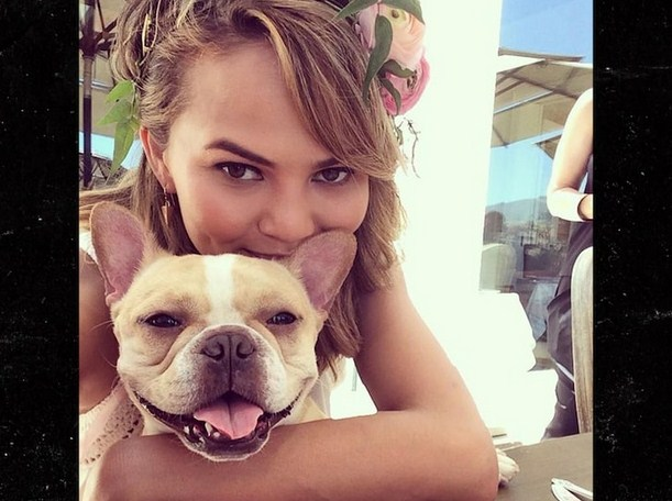 Chrissy Teigen Mourns the Death of Her 10-Year-Old French Bulldog